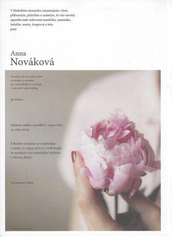 Obraz květiny
