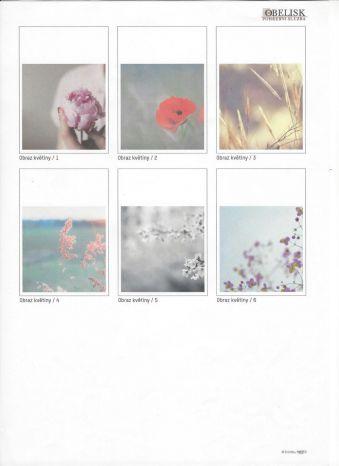 Obraz květiny varianty